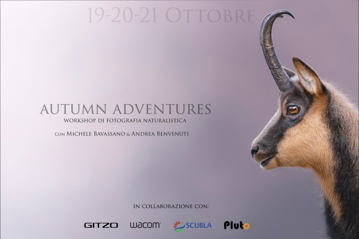 Autumn Adventure 2018